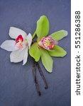 vanilla sticks with a flower | Shutterstock . vector #551286388
