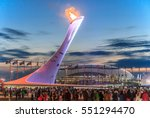 Sochi  Russia   February 15 ...