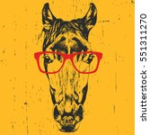 Portrait Of Horse With Glasses...