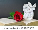 Angel  Rose And Old Book On...