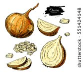 onion hand drawn vector set.... | Shutterstock .eps vector #551424148