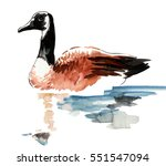 Watercolor Duck
