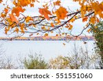 colorful leaves and lake... | Shutterstock . vector #551551060