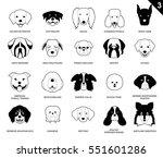 dog faces stroke monochrome... | Shutterstock .eps vector #551601286