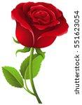 red rose on stem illustration   Shutterstock .eps vector #551623054