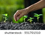 farmer's hand planting a seed... | Shutterstock . vector #551701510