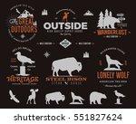 wild animal badges set and... | Shutterstock . vector #551827624