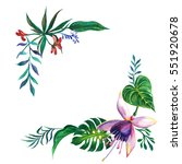 tropical hawaii leaves palm... | Shutterstock . vector #551920678