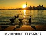 toronto city skyline at night ... | Shutterstock . vector #551932648