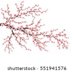 realistic sakura japan cherry... | Shutterstock .eps vector #551941576