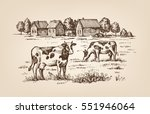 vector image of village and...