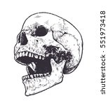 anatomic skull vector art.... | Shutterstock .eps vector #551973418