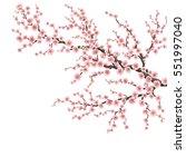 realistic sakura japan cherry... | Shutterstock .eps vector #551997040
