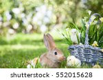 cute rabbit and little chicks | Shutterstock . vector #552015628
