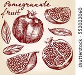 fruit pomegranate  set hand... | Shutterstock .eps vector #552022060
