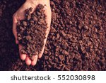 soil in hand  palm  cultivated... | Shutterstock . vector #552030898