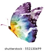 Stock photo watercolor butterfly isolated on white 552130699