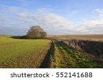 A Grassy Bridleway In An...