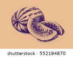 drawing of watermelon.... | Shutterstock . vector #552184870