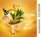 tea tree oil  nature cosmetic... | Shutterstock .eps vector #552185098