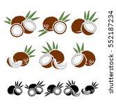 coconut set. vector | Shutterstock .eps vector #552187234