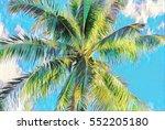 palm tree crown on sky digital... | Shutterstock . vector #552205180