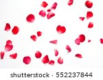 Stock photo red roses petals on white background for layout valentine concept 552237844
