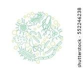 bacterial microorganism in a... | Shutterstock .eps vector #552246238