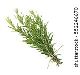 rosemary bunch tied  isolated... | Shutterstock . vector #552246670