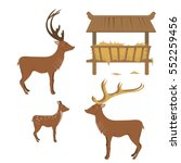 A Collection Of Reindeer  And A ...