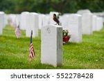 Tombstones In Arlington...