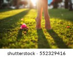 close up female crossed legs... | Shutterstock . vector #552329416