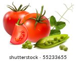 photo realistic vector... | Shutterstock .eps vector #55233655