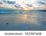 miami seagull seaside looking... | Shutterstock . vector #552587608
