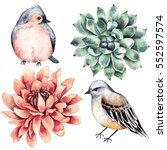 Collection  Flowers  Bird ...