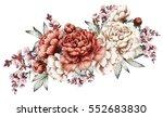 red peonies. watercolor flowers.... | Shutterstock . vector #552683830