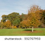 Autumnal Colours Of The Trees...