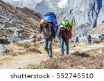 young porters of mountain... | Shutterstock . vector #552745510