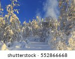 snow covered birch forest ... | Shutterstock . vector #552866668