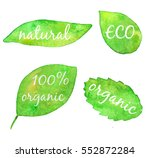 watercolor collection of leaves ... | Shutterstock . vector #552872284