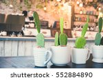 Green Cactus In The White Pot...
