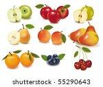 photo realistic vector... | Shutterstock .eps vector #55290643