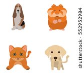 set of different cute animals ... | Shutterstock .eps vector #552952984