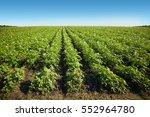 Landscapes  Agriculture
