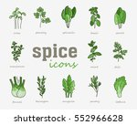 greenery vector icon. vegetable ... | Shutterstock .eps vector #552966628