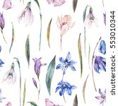 vintage watercolor spring... | Shutterstock . vector #553010344