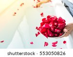 Stock photo maid scatter rose petals on bathtub 553050826