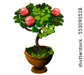 bonsai tree with pink flowers... | Shutterstock .eps vector #553090528