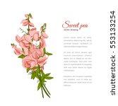 flowers bouquet   summer... | Shutterstock .eps vector #553133254