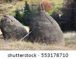 summer landscape . rural village   Shutterstock . vector #553178710